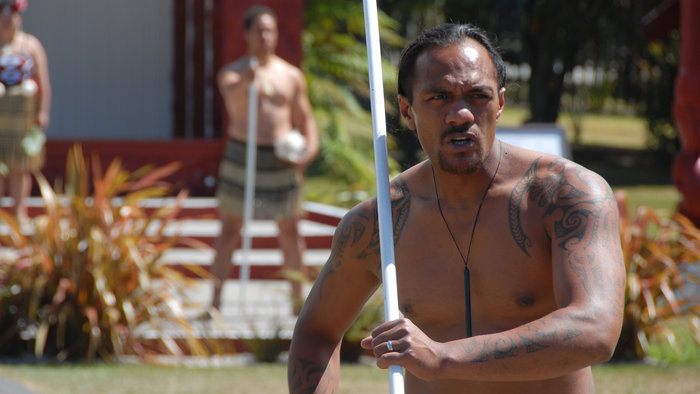 maori contribuation to new zealand The prime minister has established a new crown/māori relations portfolio   feedback received at the 18 regional hui and a number of online contributions.